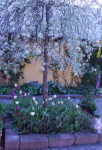 Innergården 1