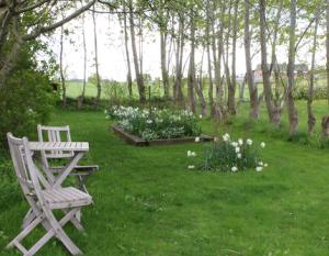 Vita trädgården